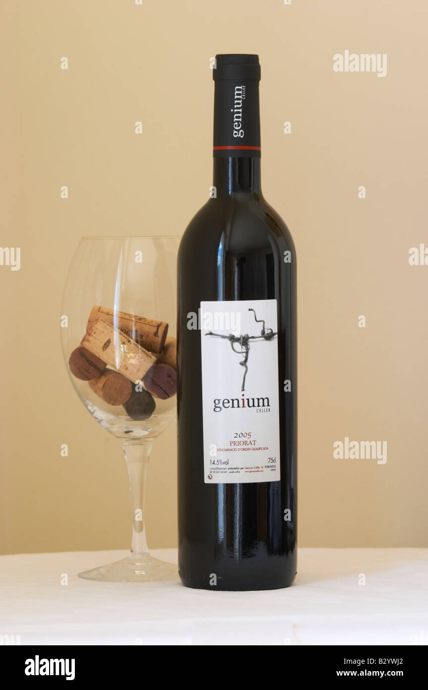Genium Celler 2005. Priorato, Catalonia, Spain. - Stock Image