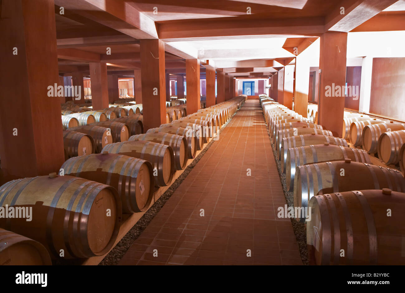 Oak barrel aging and fermentation cellar. Alpha Estate Winery, Amyndeon, Macedonia, Greece - Stock Image