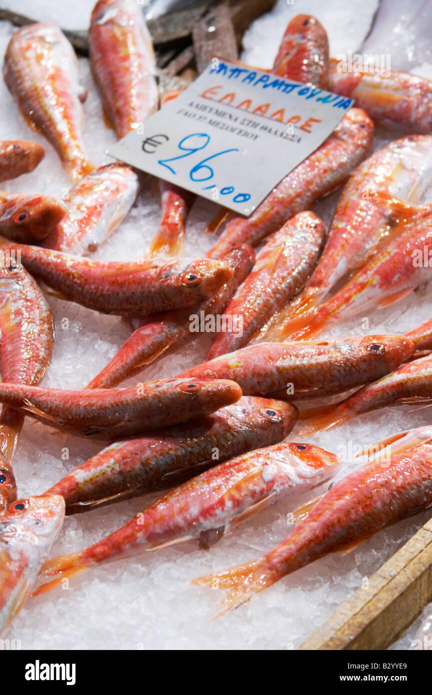 On a street market. Fish market. Thessaloniki, Macedonia, Greece - Stock Image
