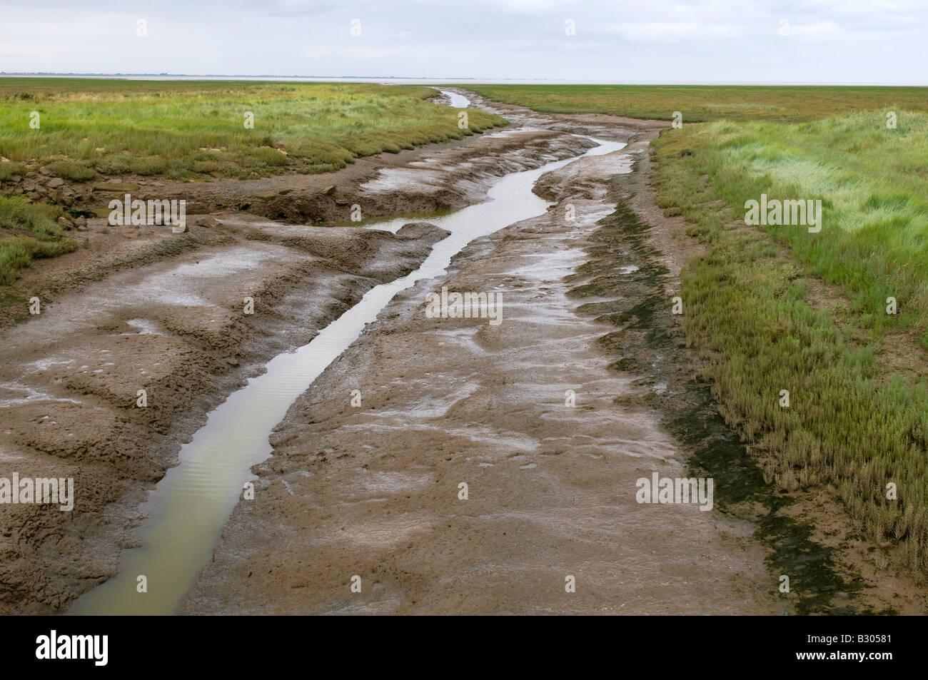 fens landscape, the wash, lincolnshire, england Stock Photo