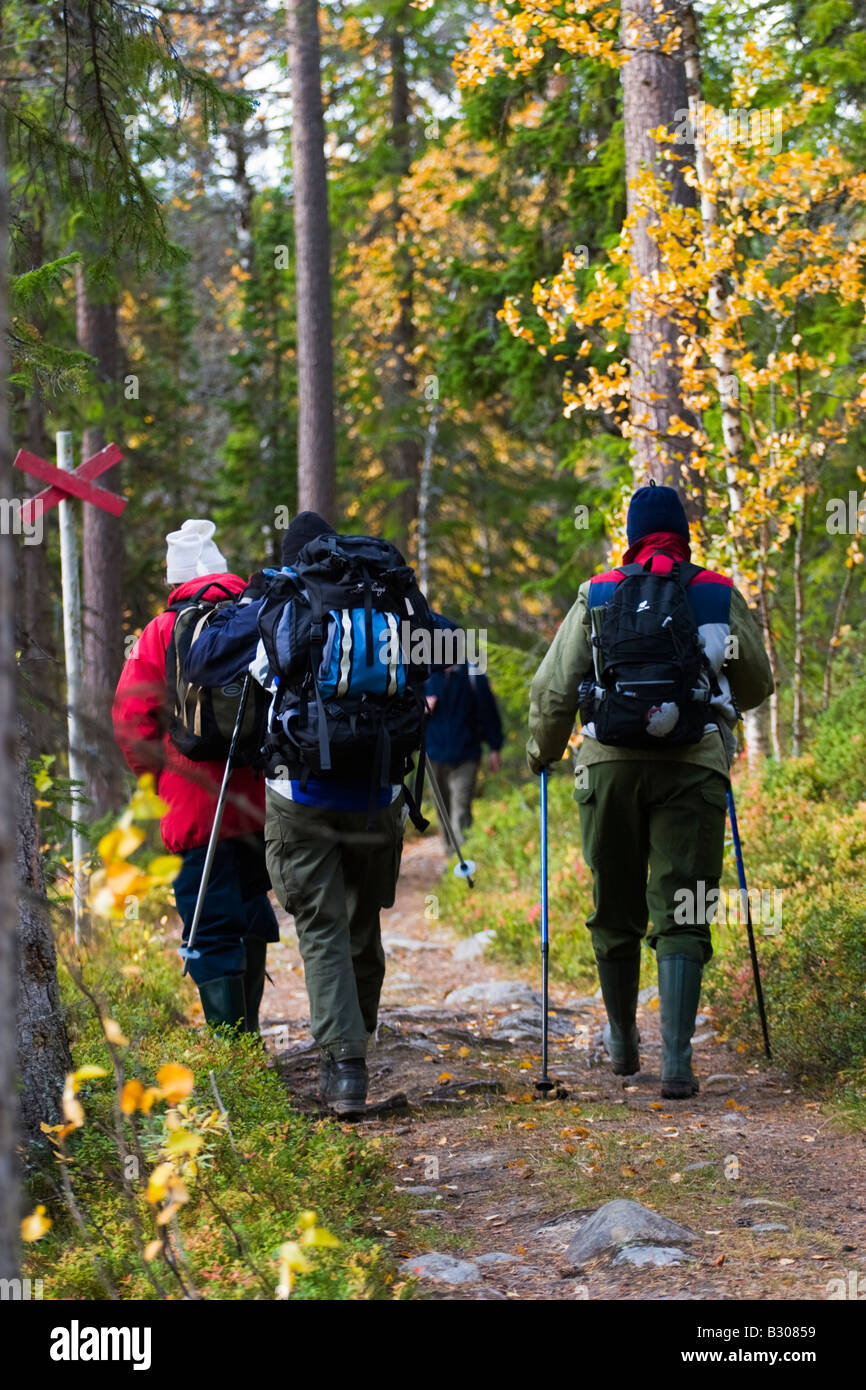 Nordic walking by females on a forest trail - Stock Image