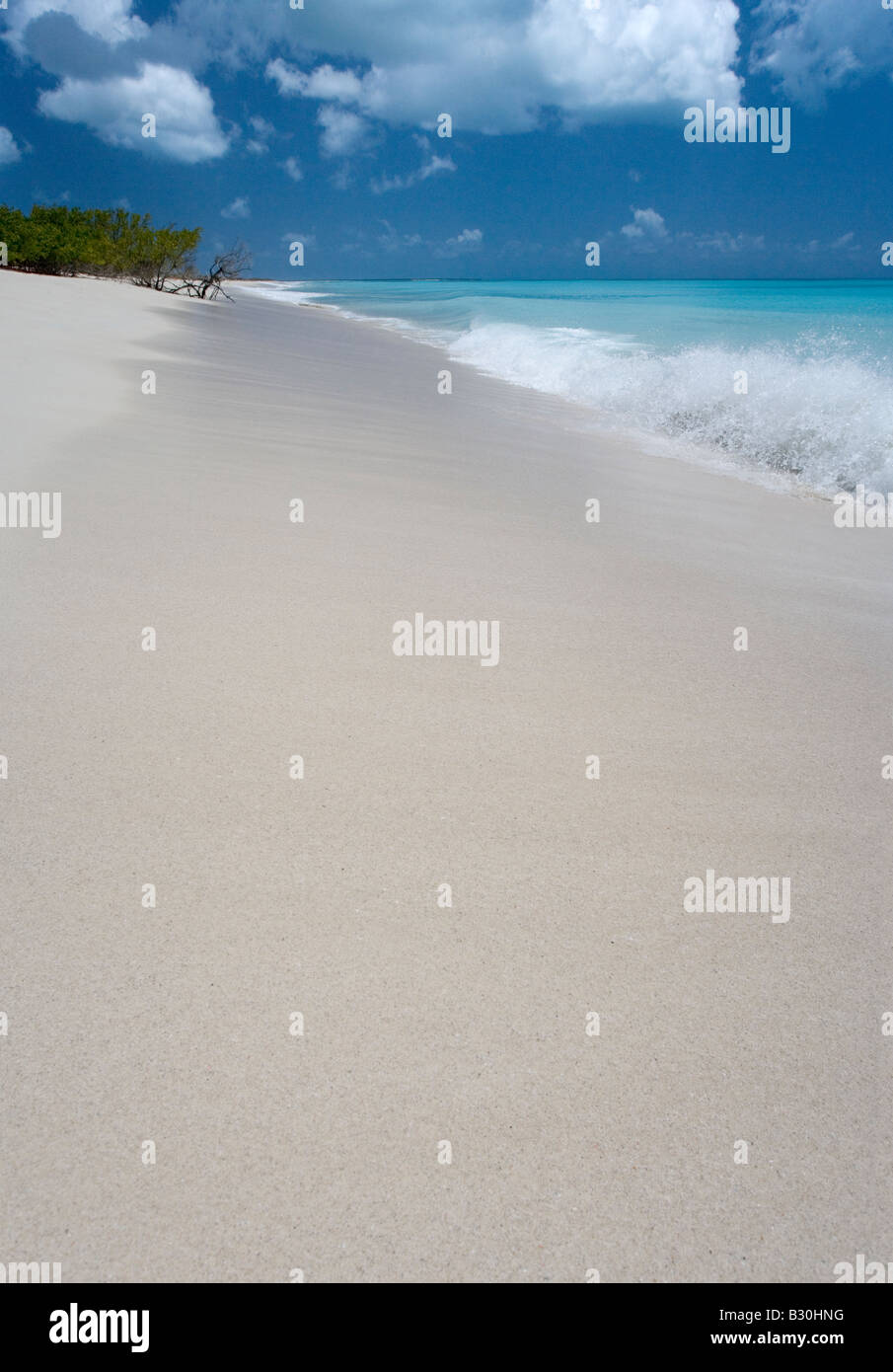 Radiant water and pink sand along 11 Mile Beach Barbuda West Indies - Stock Image