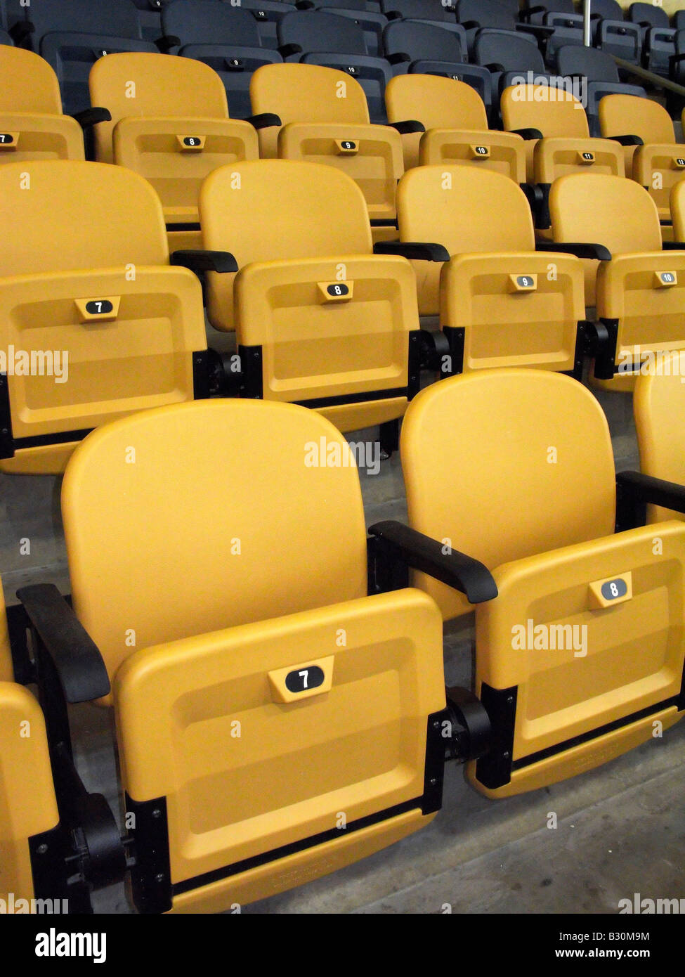 Stadium seats - Stock Image
