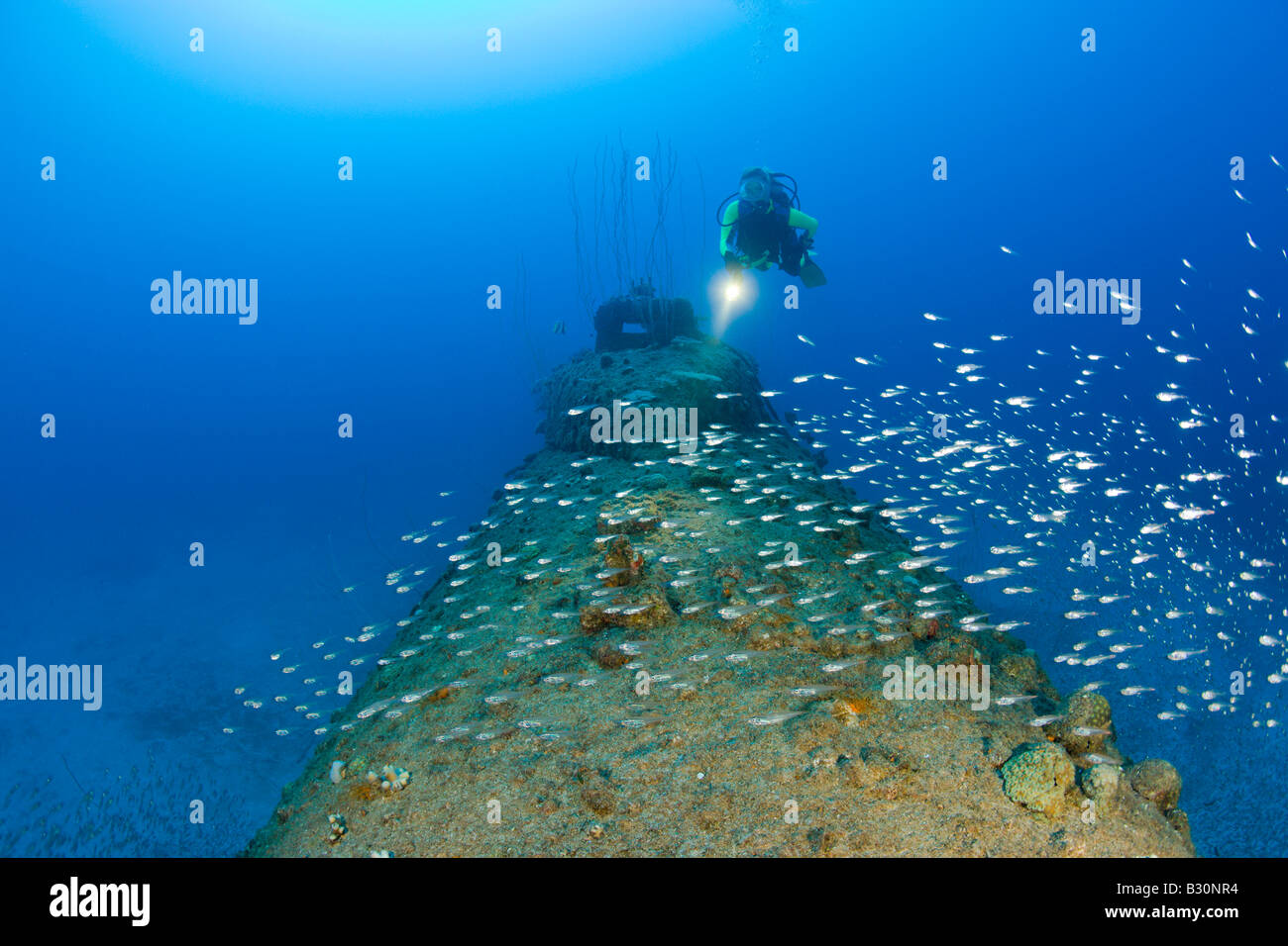 Diver over Stern of USS Apogon Submarine Marshall Islands Bikini Atoll Micronesia Pacific Ocean - Stock Image