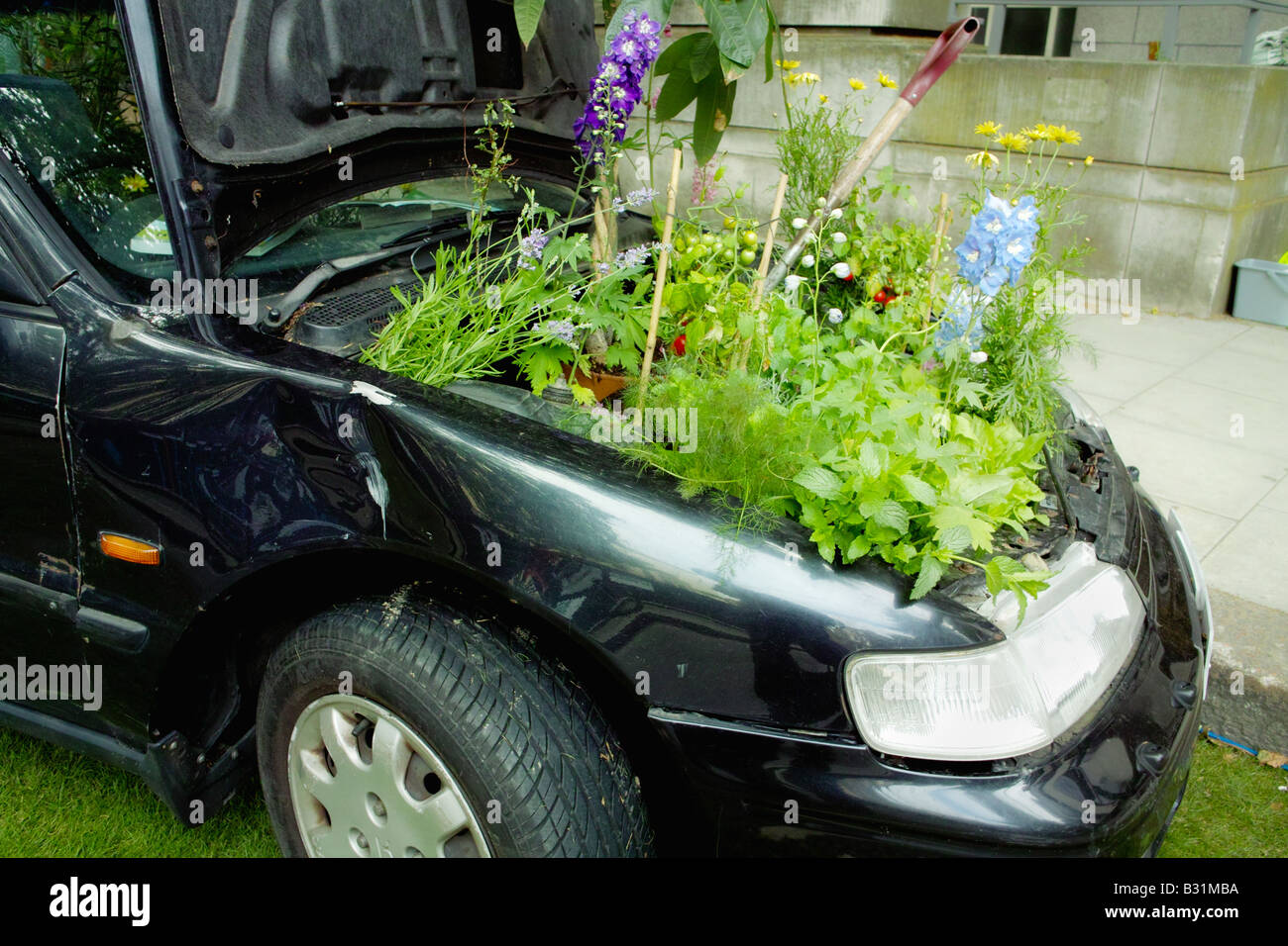 clean green environmentally friendly car vehicle transport with plants in engine bay - Stock Image