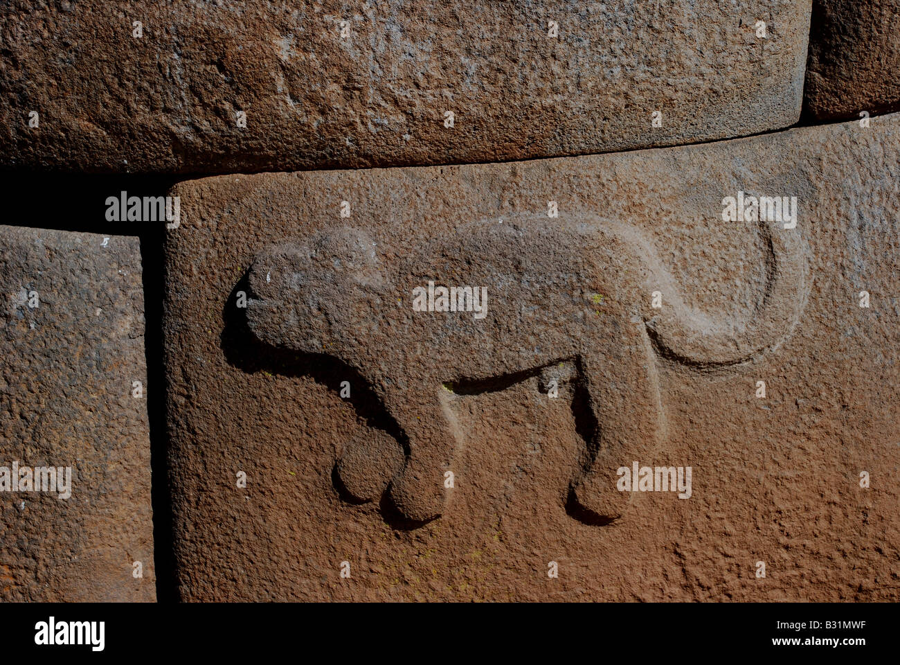 Peru, puma carving on ancient funerary towers of the Colla, Lupaca and Inca cultures in Cutimbo, 20km from Puno Stock Photo