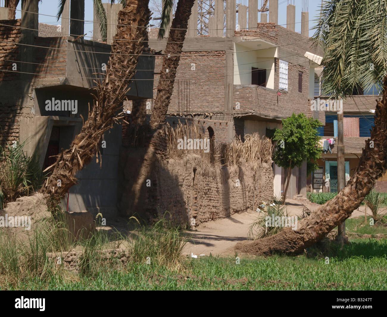 Houses in Luxor, Egypt, Africa - Stock Image