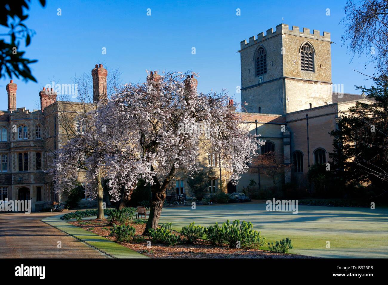 Jesus College entrance gate Chapel and Cloisters University of Cambridge City Cambridgeshire England Britain UK - Stock Image