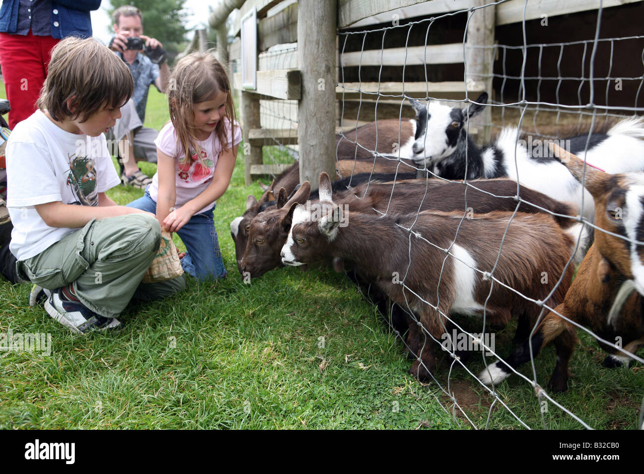 Pic Shows children with goats on Odds Farm - Stock Image
