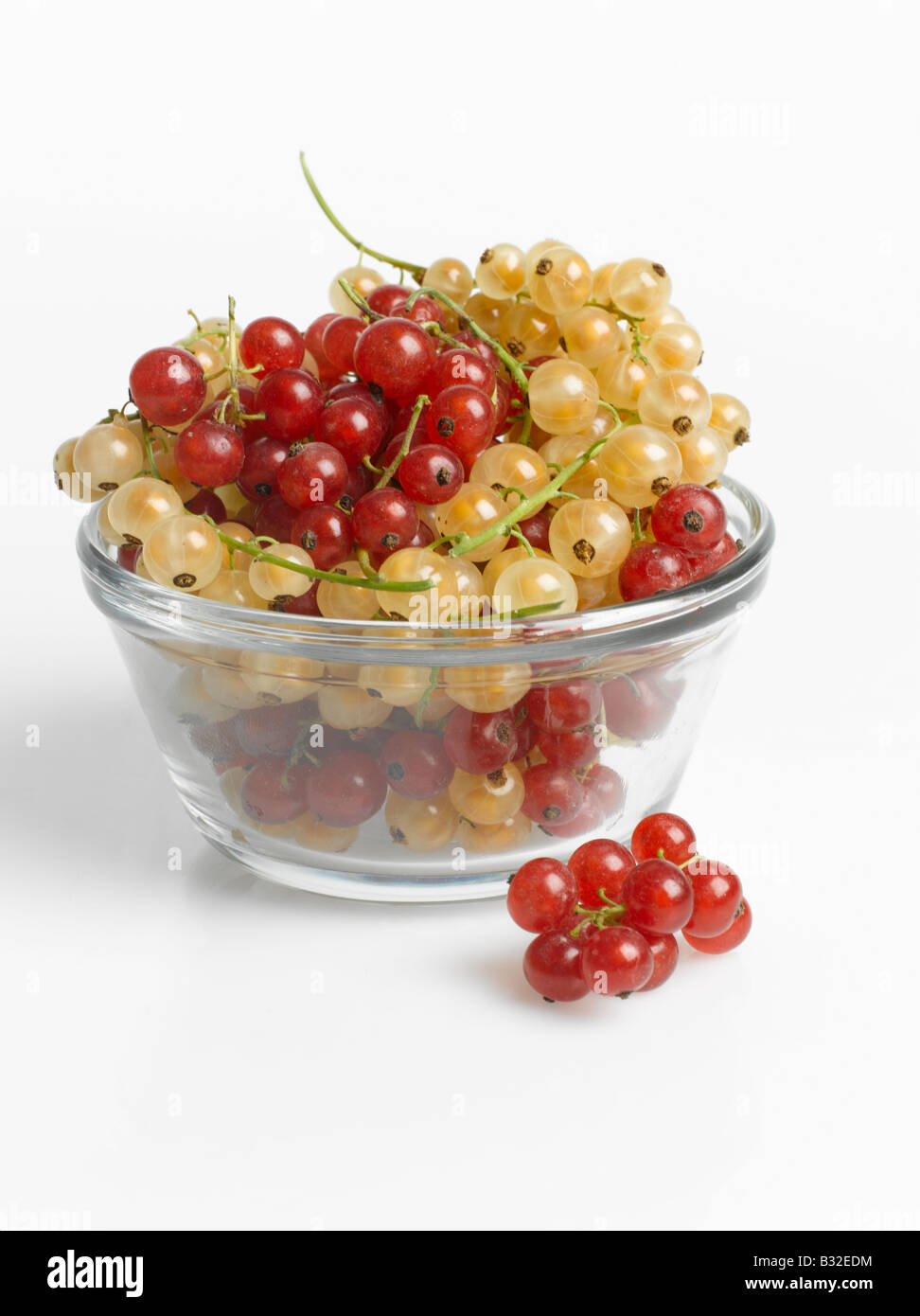 Bowl of Red and White Currants cut out on white background - Stock Image