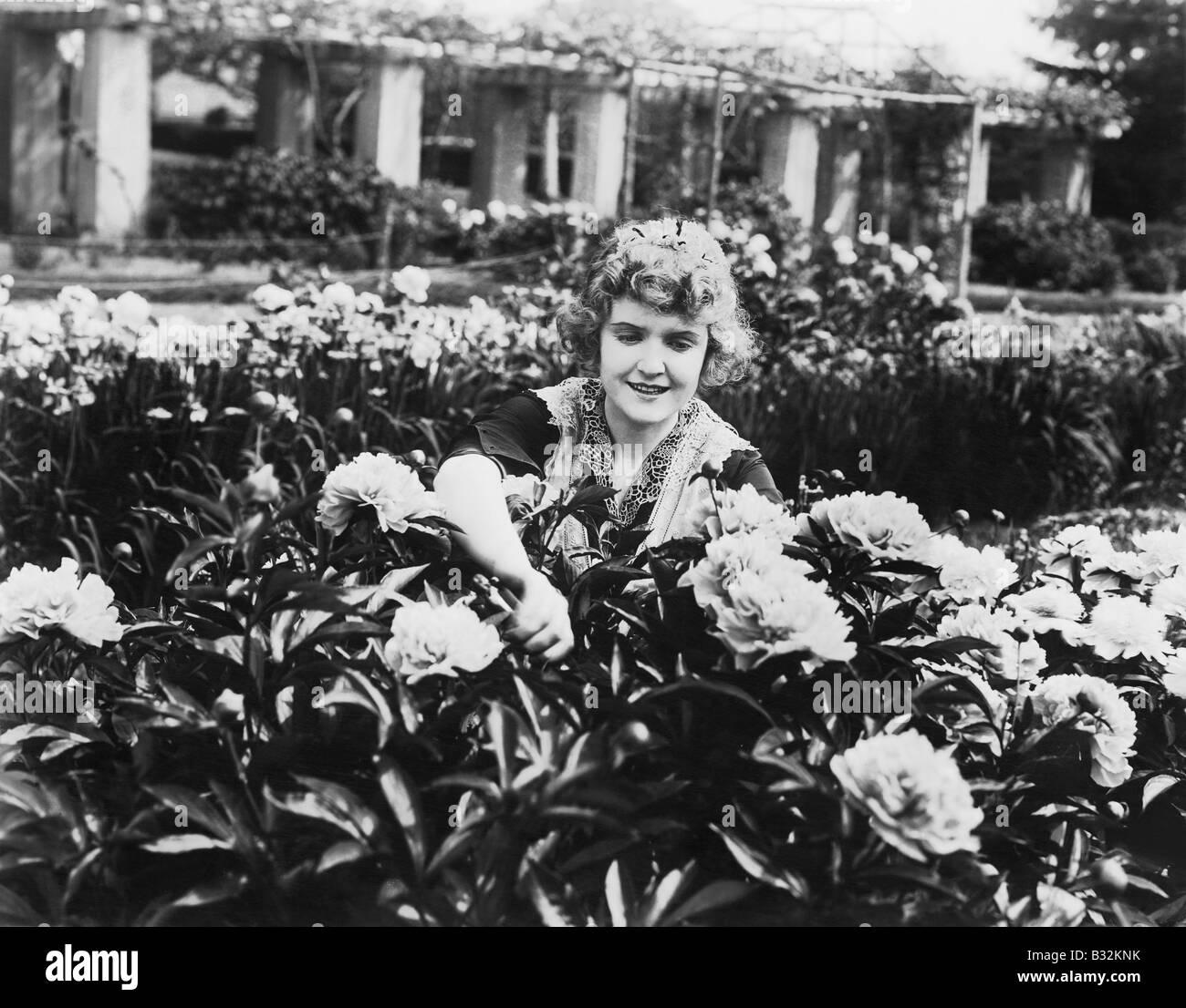 Woman tending flowers in garden - Stock Image