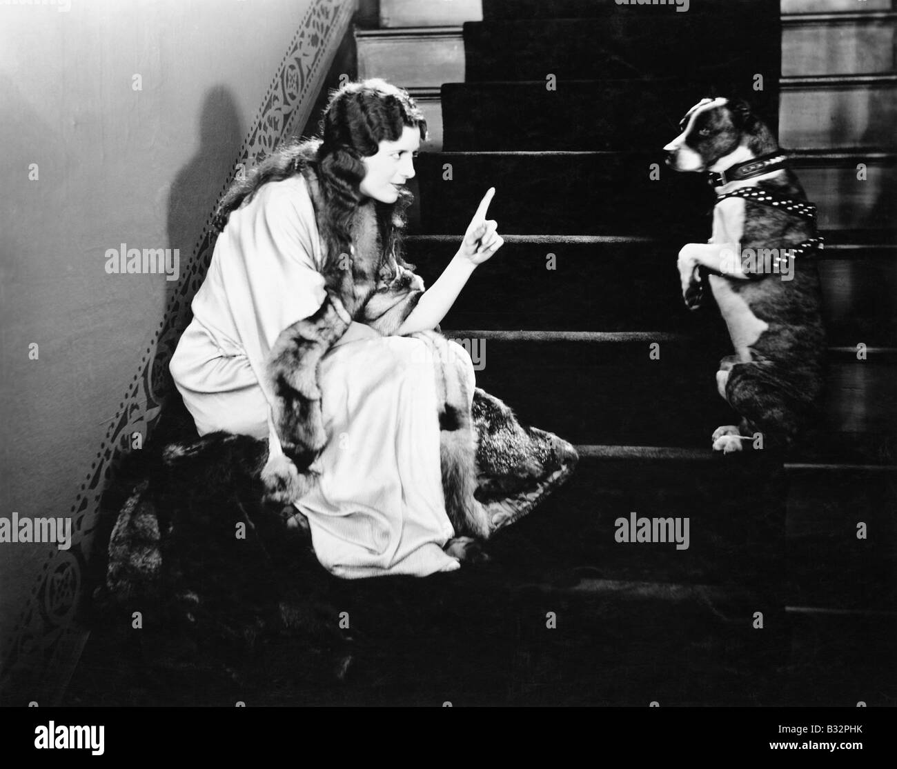 Woman scolding dog on stairs - Stock Image