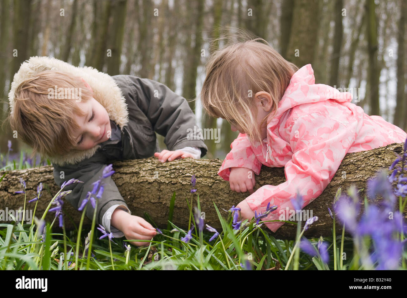 Kids playing in Bluebell Wood Bucks UK April - Stock Image