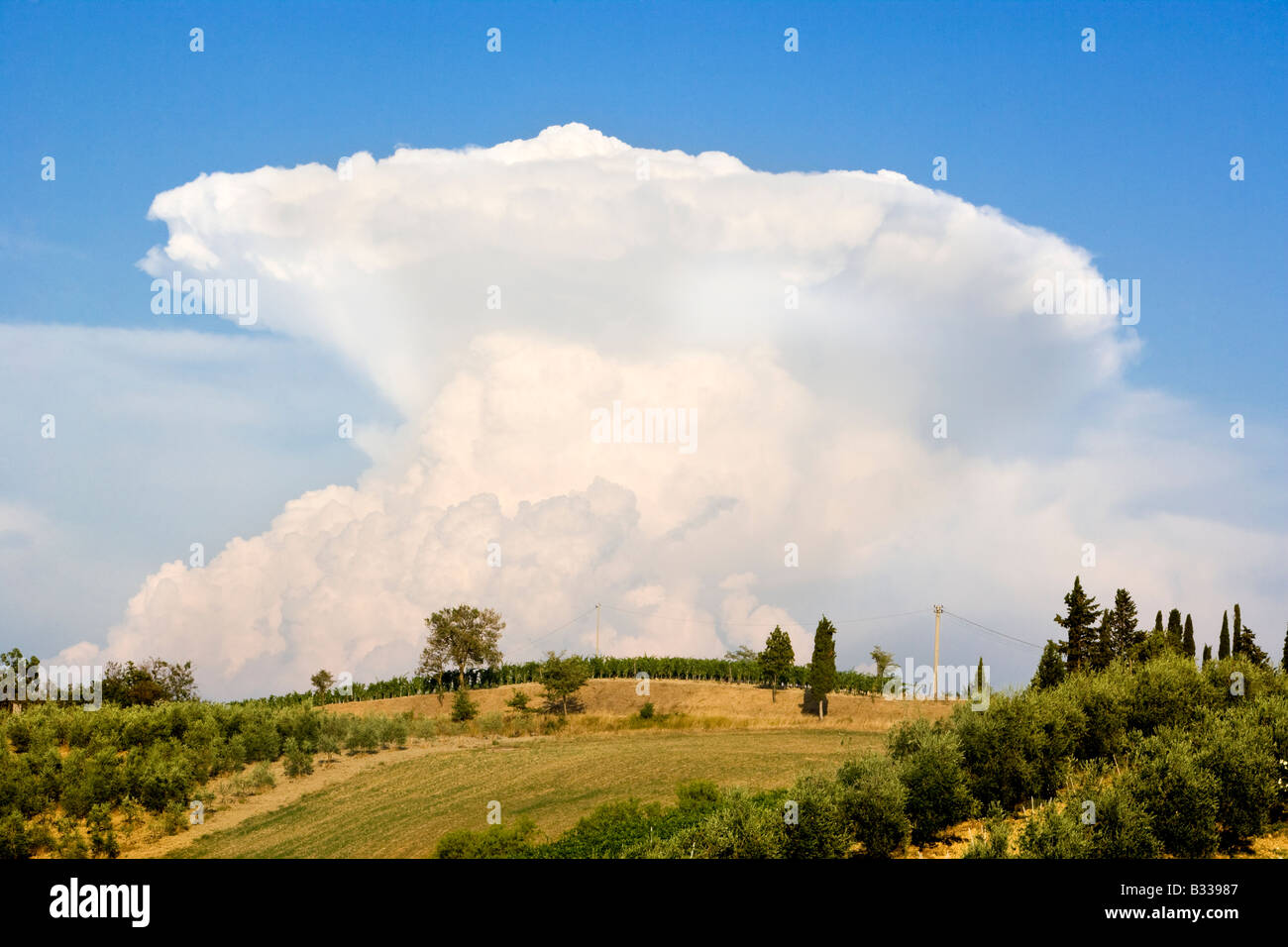 Cumulonimbus thunder cloud with anvil head rising above the Tuscan countryside Tuscany Italy - Stock Image