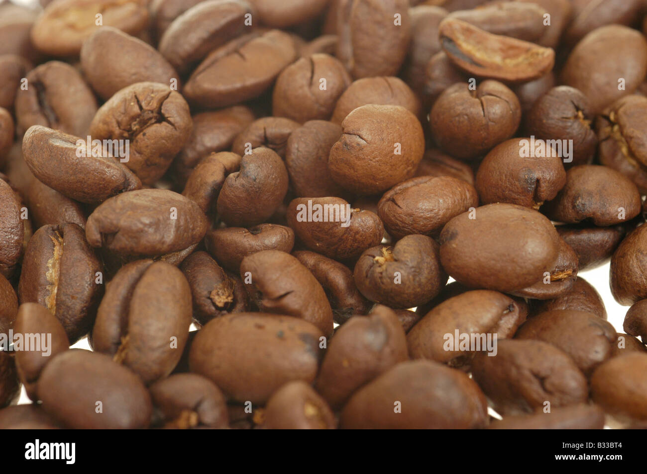 coffee beans presented studio taking - Stock Image