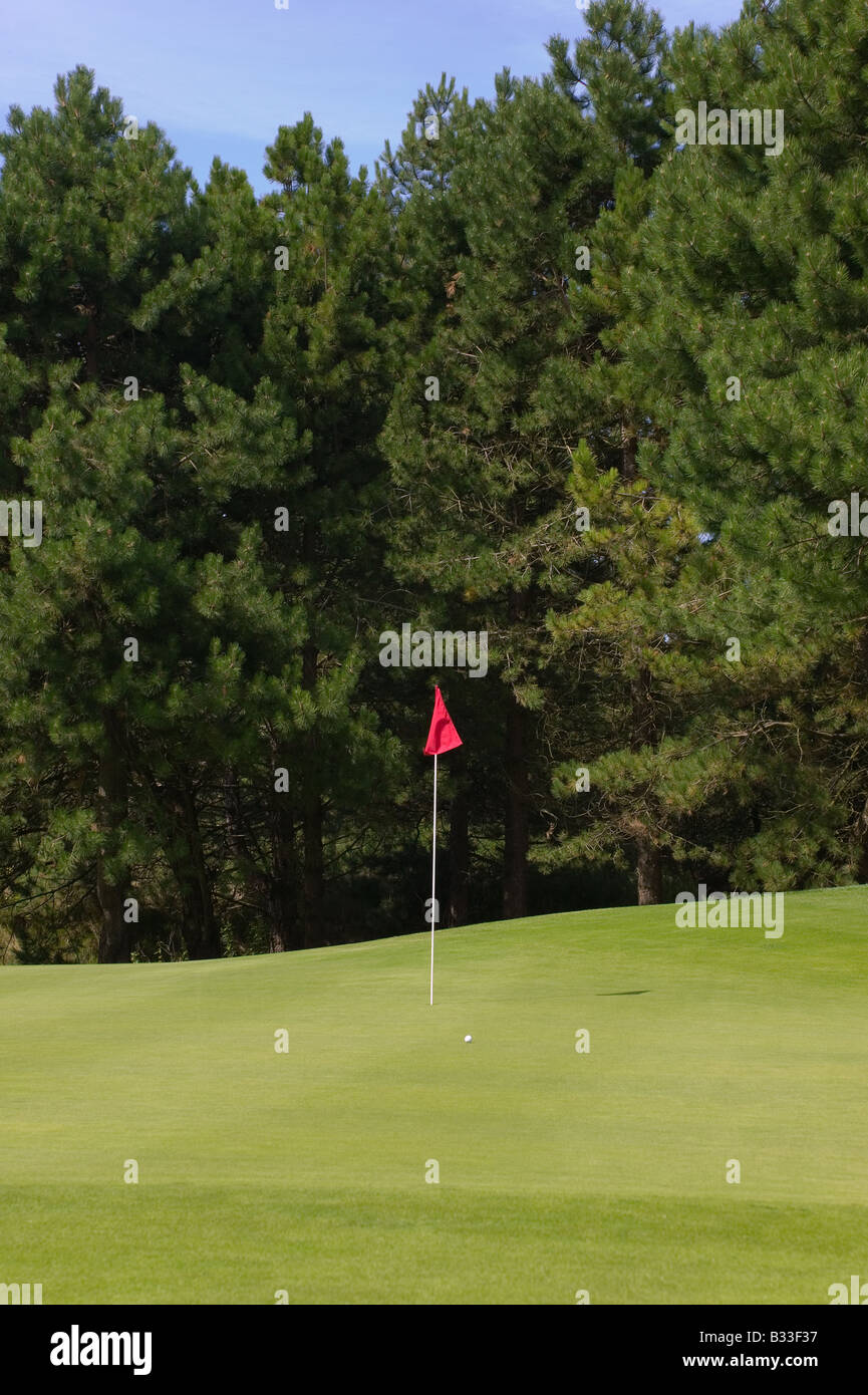 Golf putting green with a red flag and ball - Stock Image