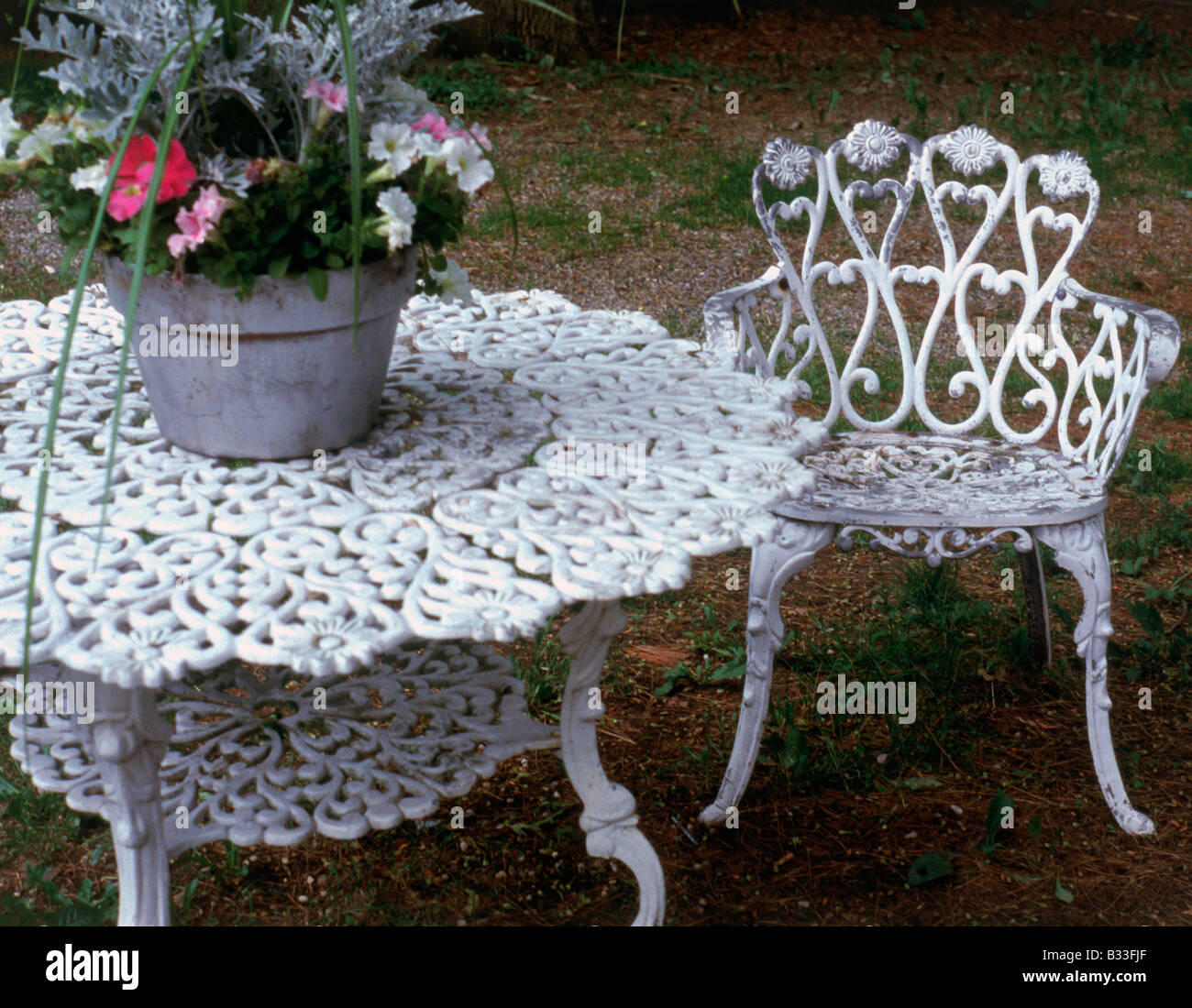 Ornate white Victorian iron garden furniture and a pot of plants
