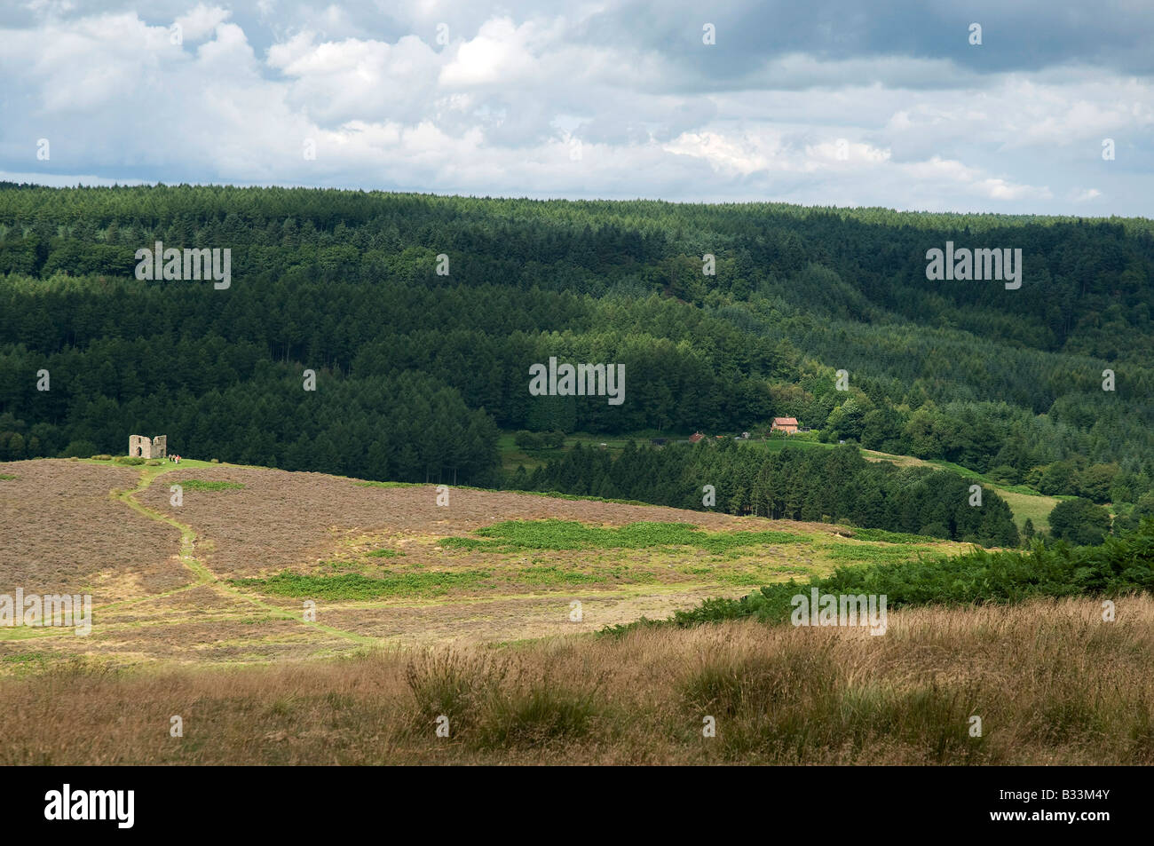 Skelton Tower and Newtondale, North Yorkshire Moors, Northern England - Stock Image