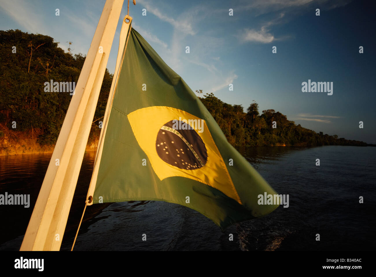 Brazilian flag in the Amazon - Stock Image