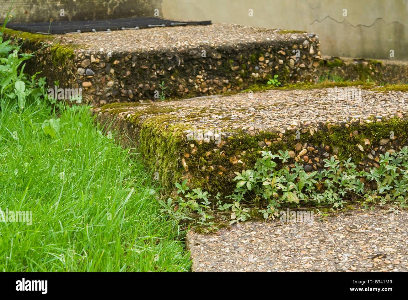 A garden path, UK. - Stock Image