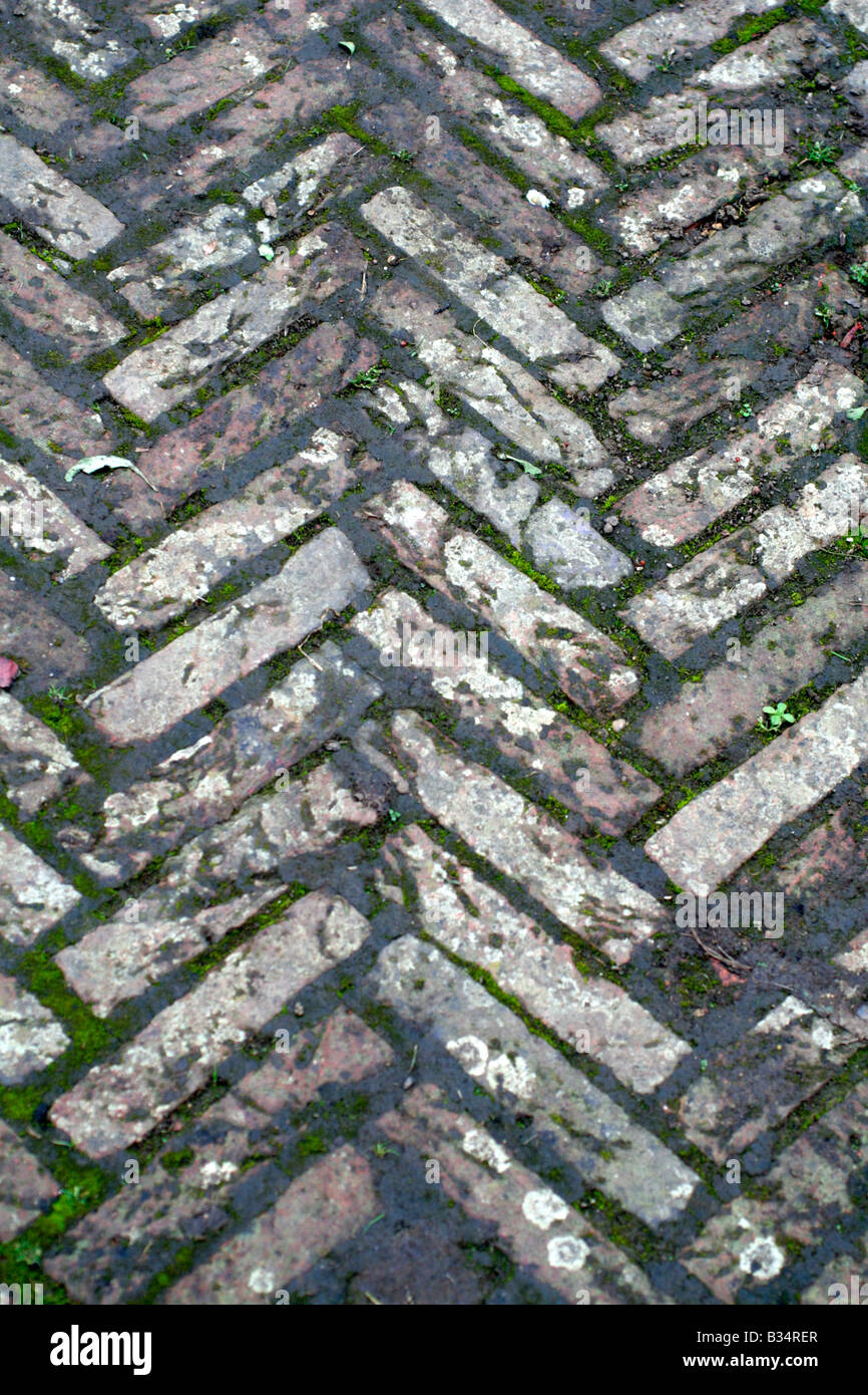 BRICK PAVIOURS CAN BE LAID IN MANY INTERESTING PATTERNS AND AQUIRE AN ATTRACTIVE PATINA AS THEY AGE - Stock Image