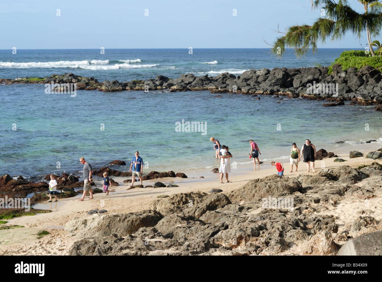 Turtle Beach Northshore Oahu Hawaii - Stock Image
