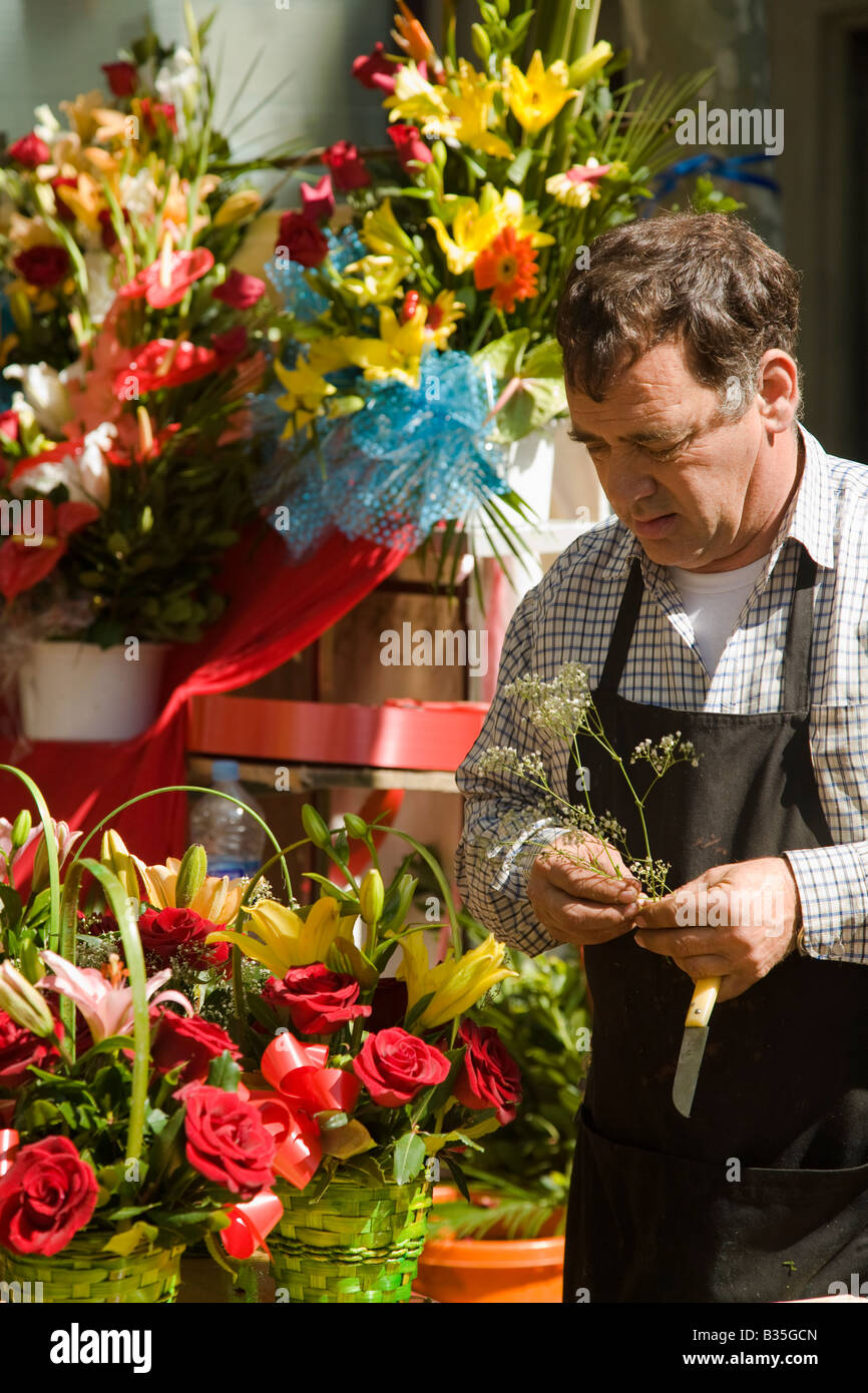 SPAIN Barcelona Adult man wear apron and arrange flowers for sale along Las Ramblas florist working outdoors - Stock Image