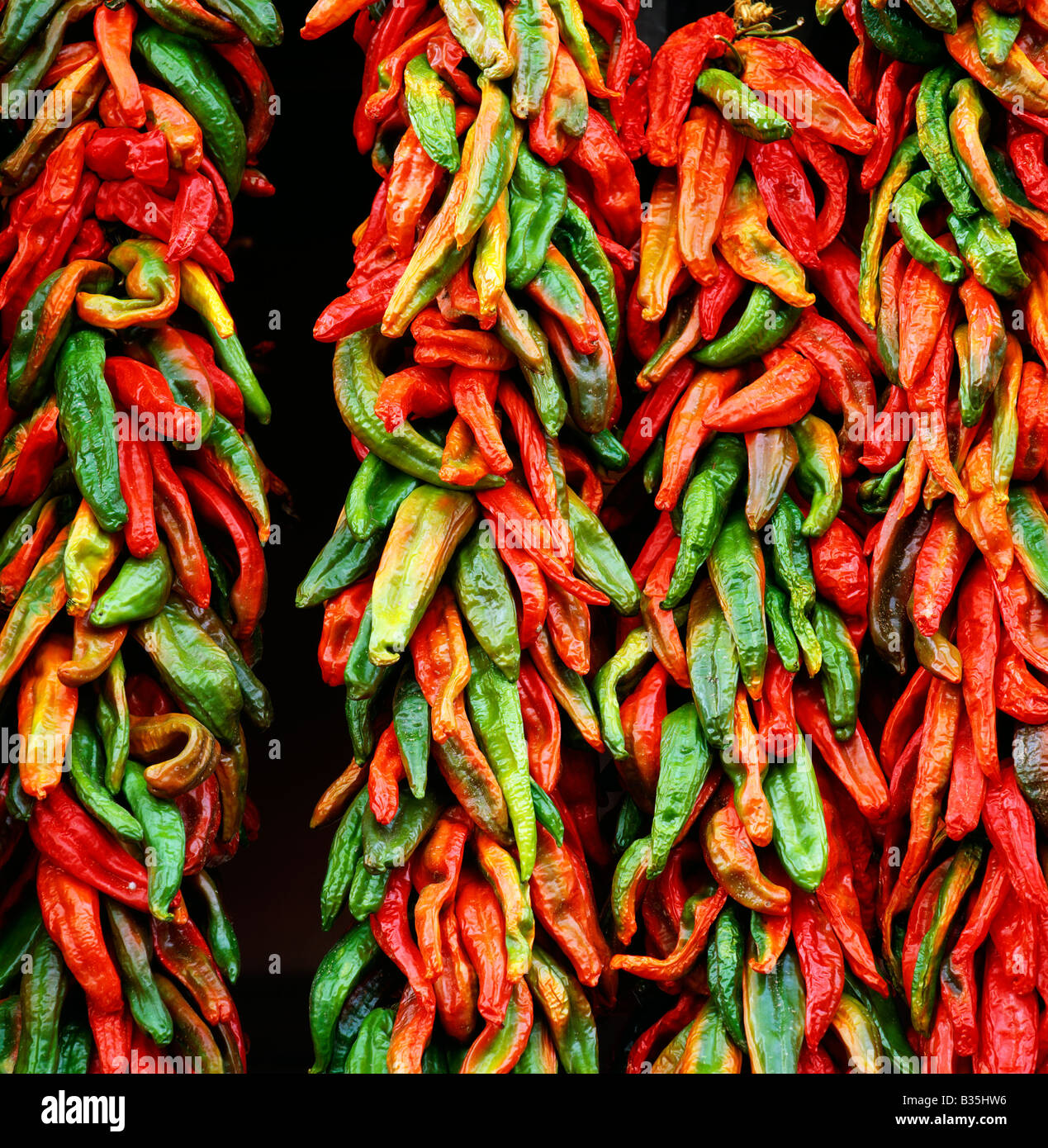 ARTESANO'S; DOWNTOWN STORE DISPLAY OF CHILI PEPPERS, SANTA FE, NEW MEXICO - Stock Image