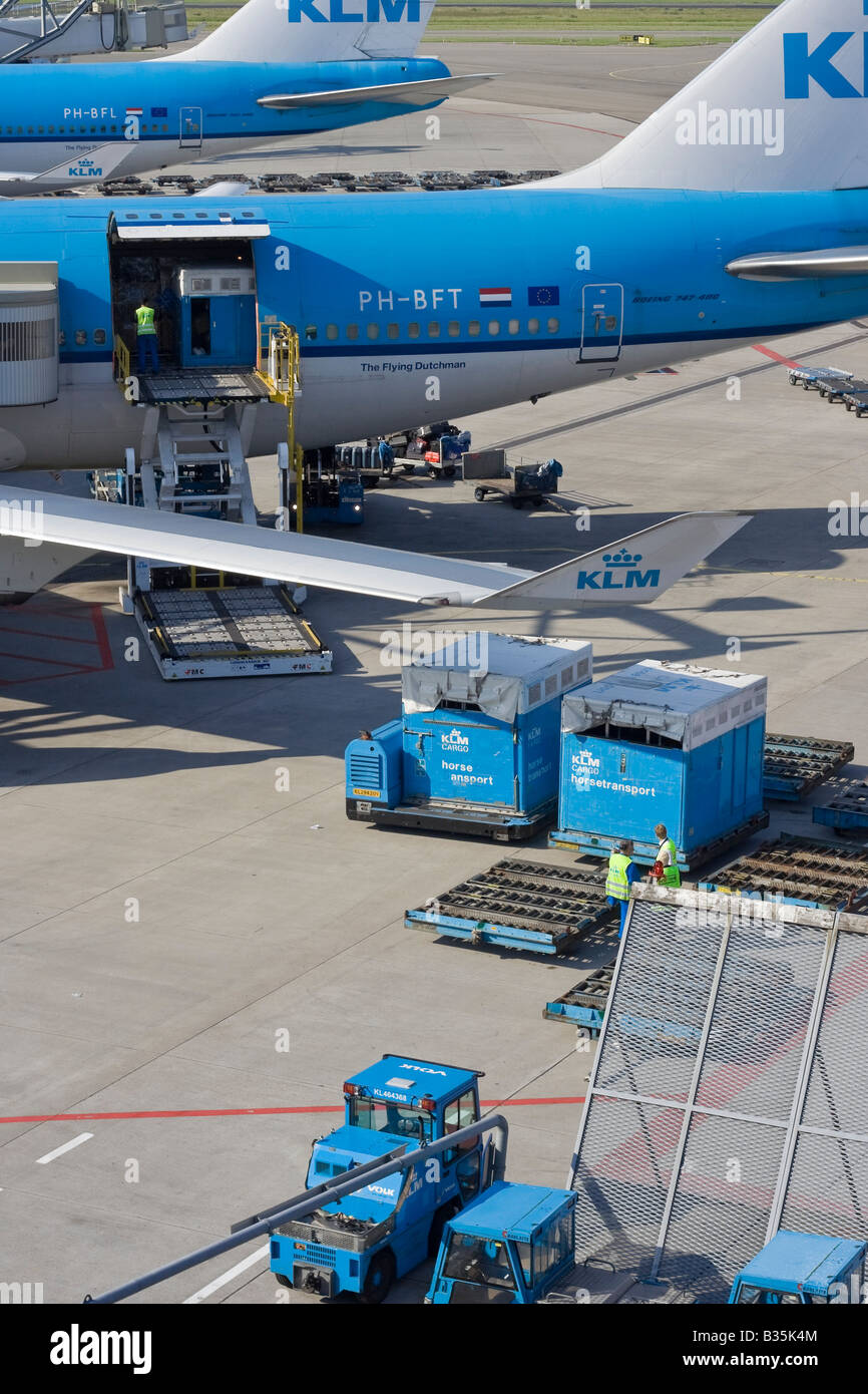 At Amsterdam Airport Schiphol the ground crew is loading a