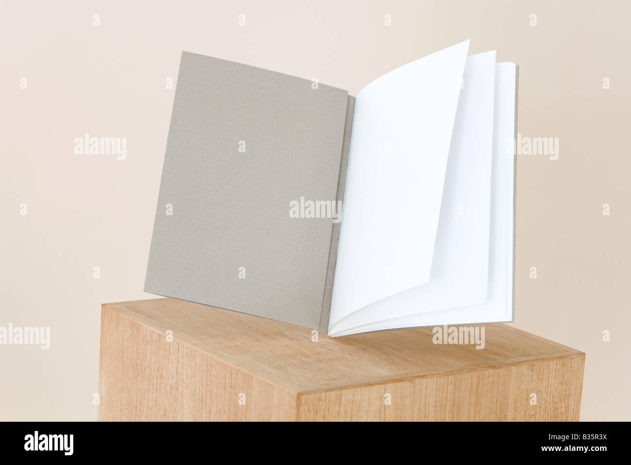 Open book balancing on pedestal, blank pages, close-up - Stock Image