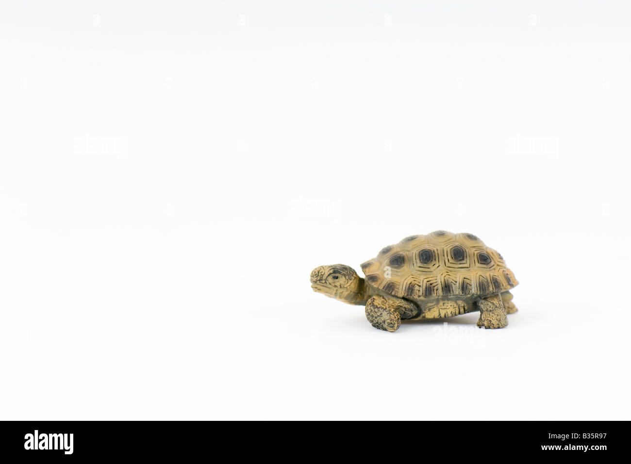 Toy turtle, side view, close-up Stock Photo