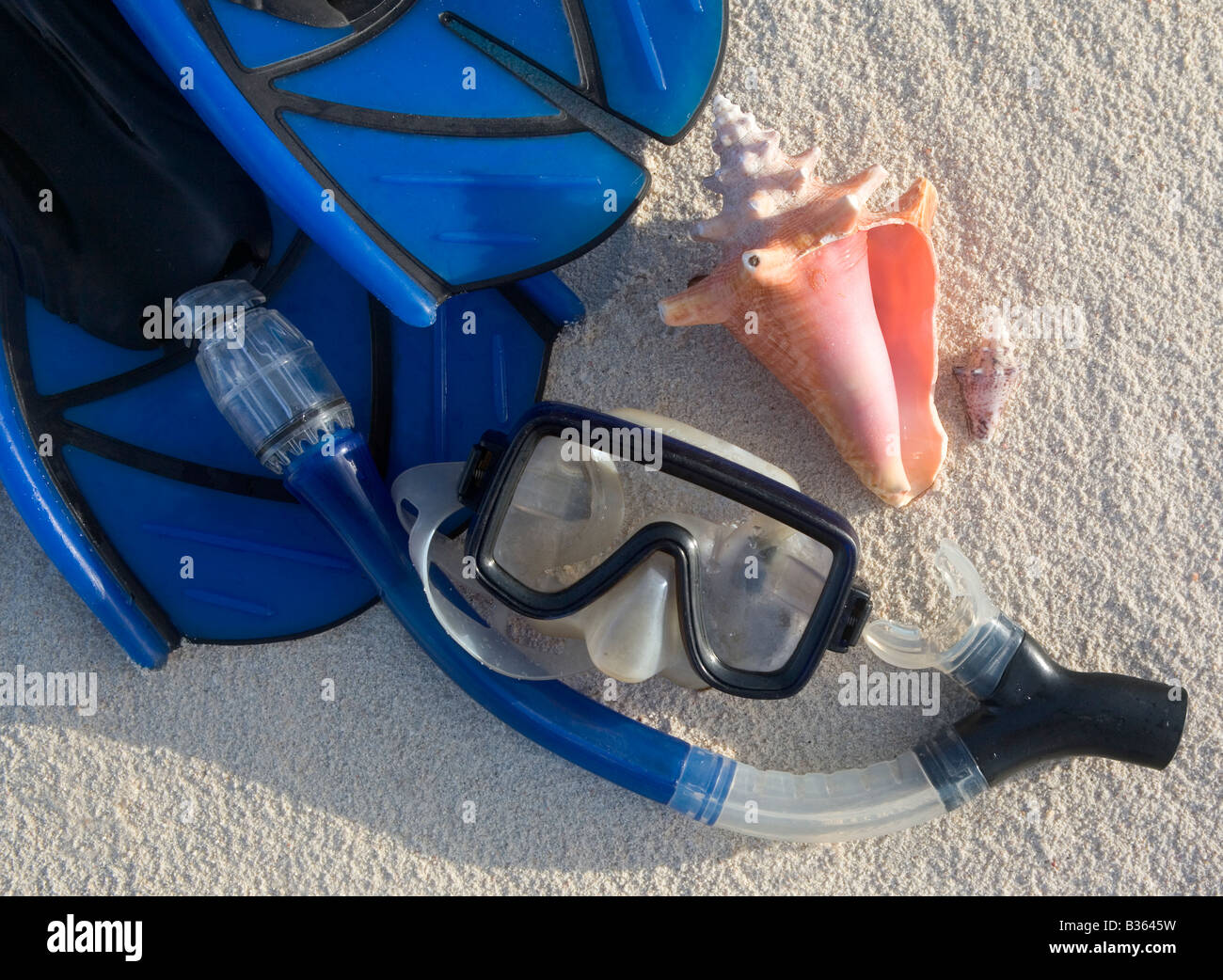 Snorkeling gear and shells on a Caribbean beach. - Stock Image