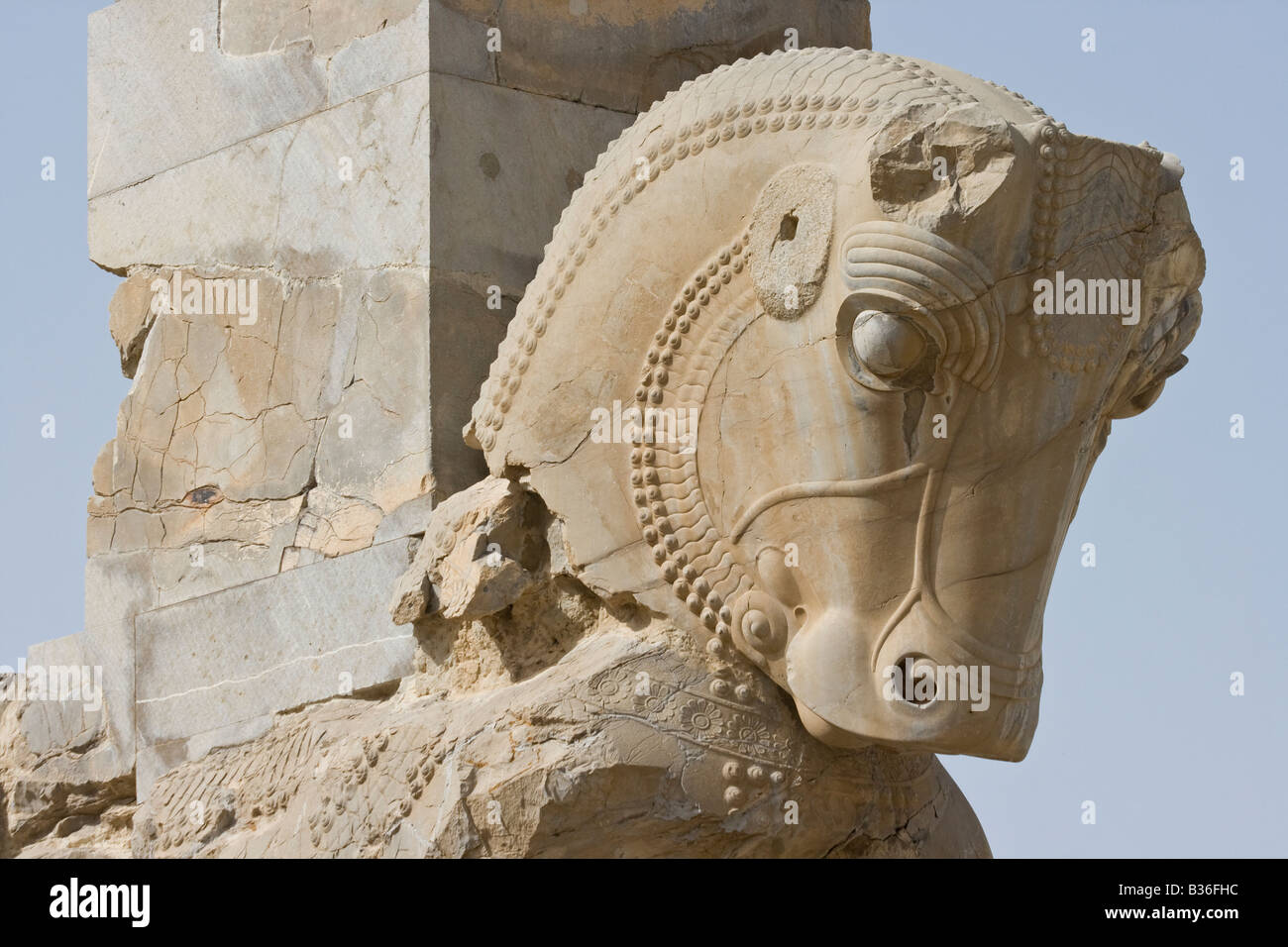 Page 3 Iran Persepolis Horse High Resolution Stock Photography And Images Alamy