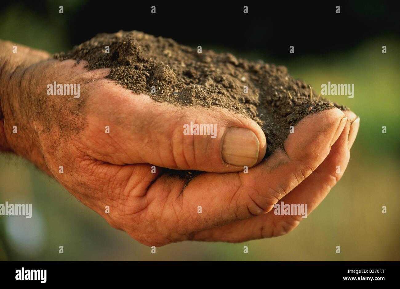 Soil, earth in a gardener's hand - Stock Image