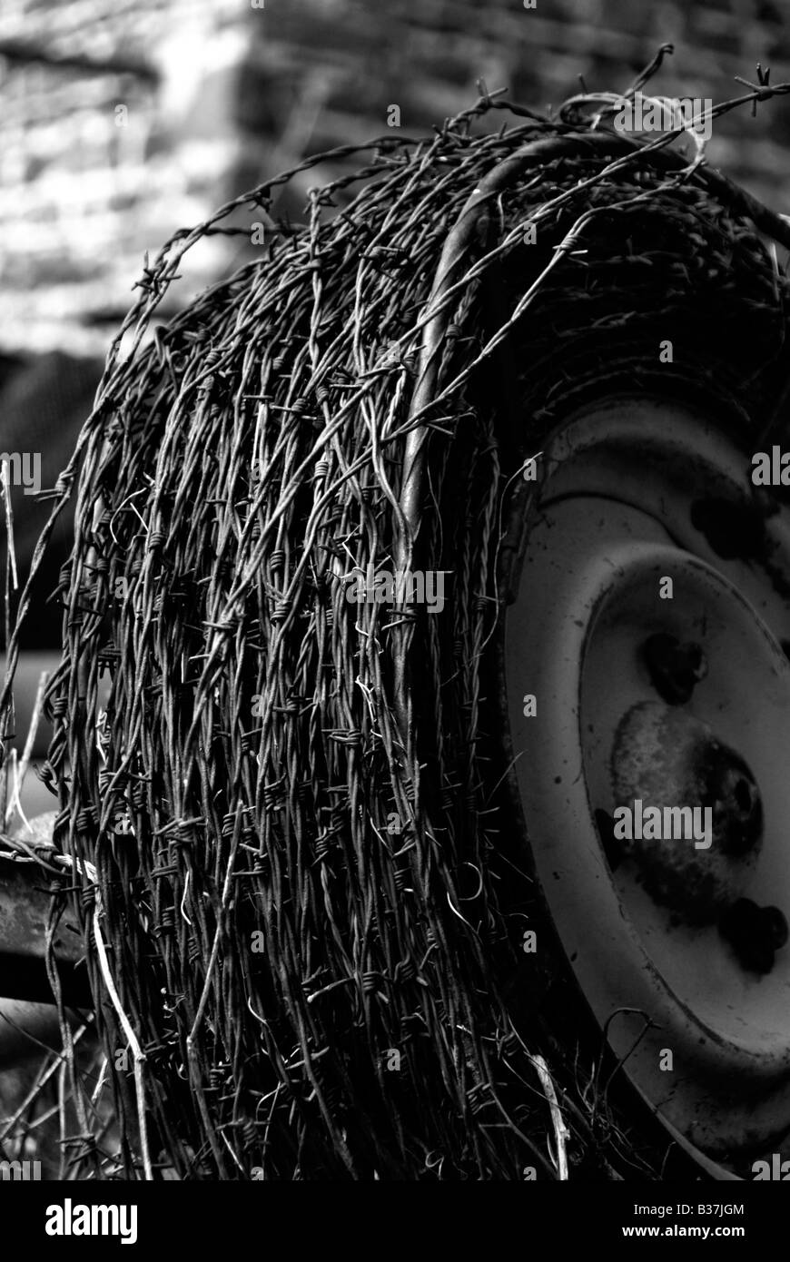 Barbed Wire Fence Rubbish Stock Photos & Barbed Wire Fence Rubbish ...
