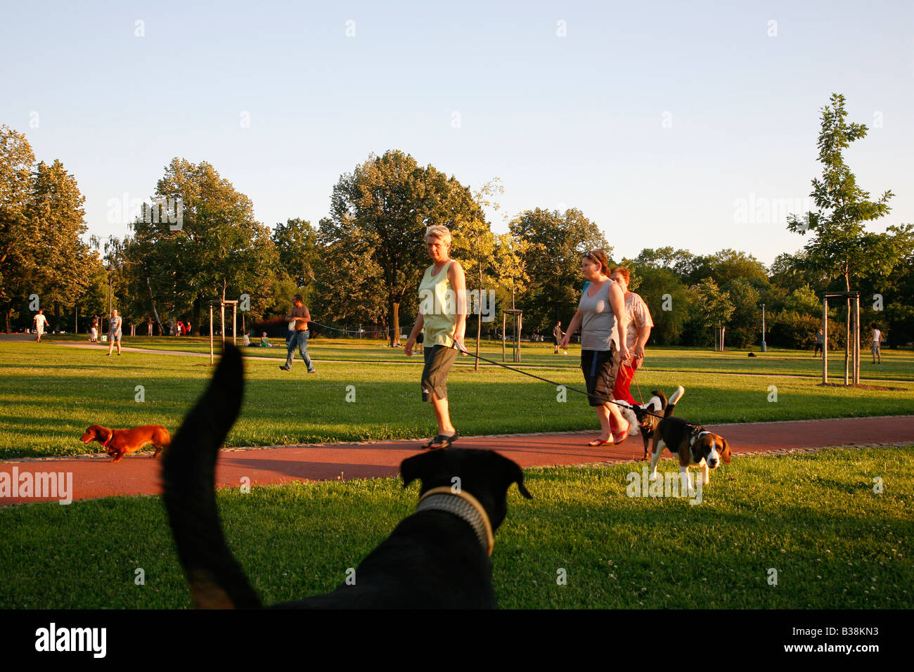 Aug 2008 - People and dogs walking at Letna Park Prague Czech Republic - Stock Image