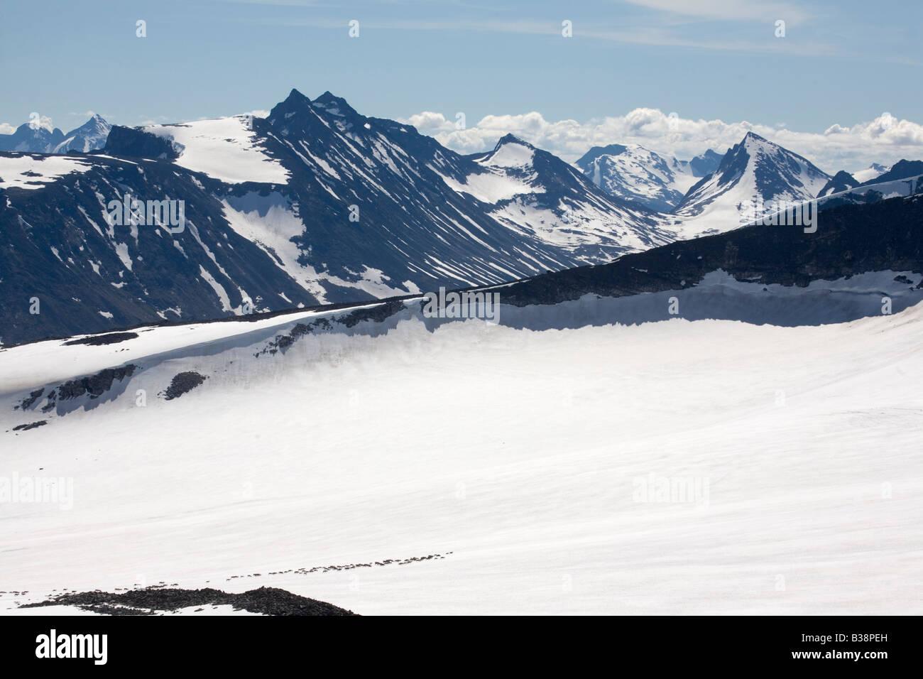 Norway Jotunheimen fjell Galdh piggen reindeer on glacier summer 2008 - Stock Image