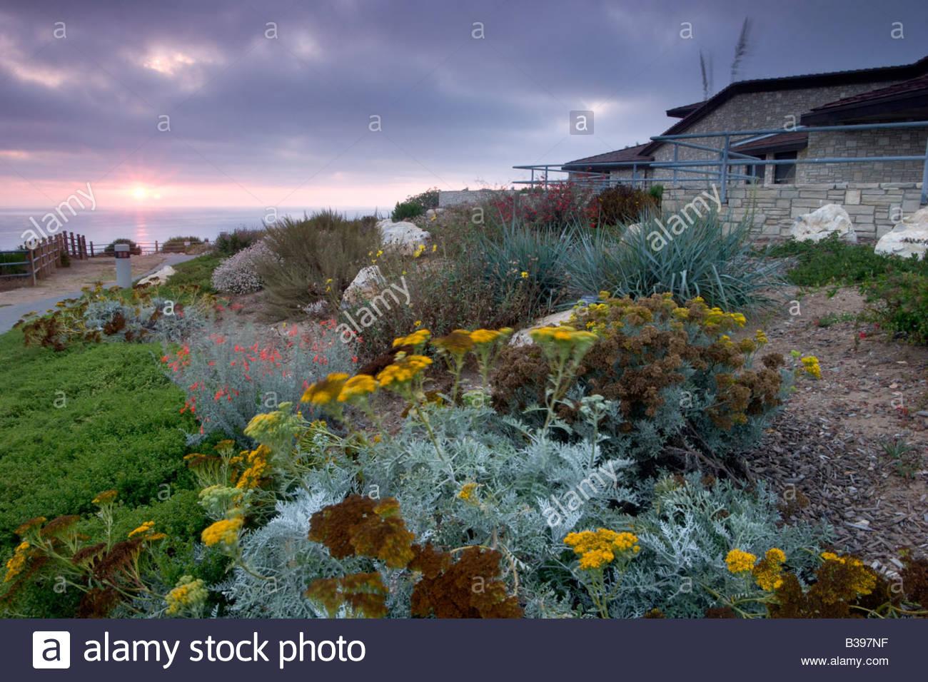 Garden at Point Vicente Interpretive Center Rancho Palos Verdes Peninsula California - Stock Image