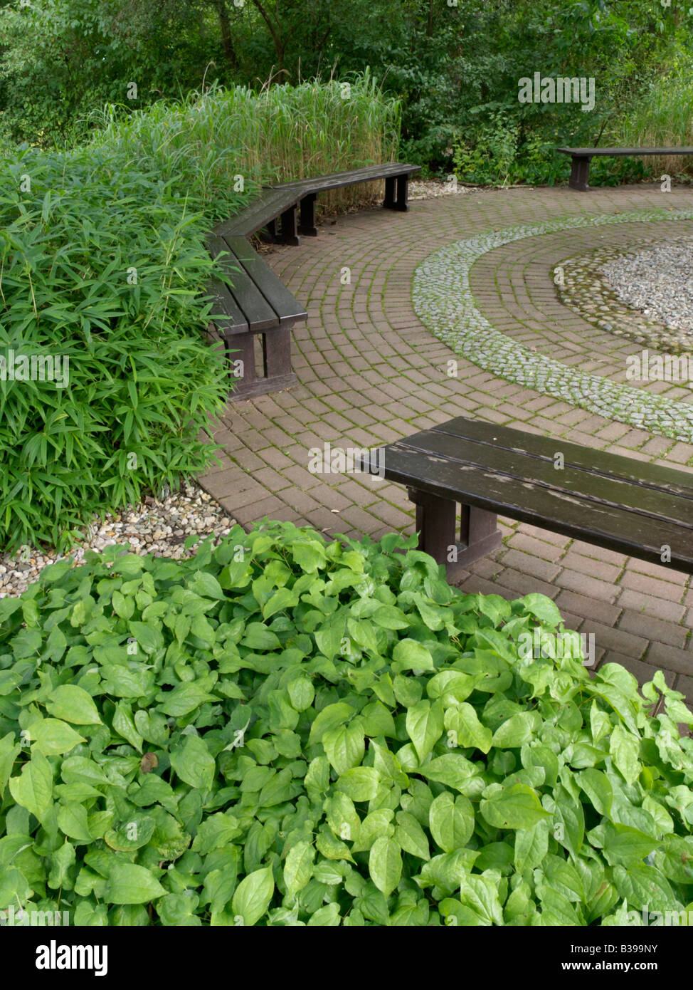 Benches in a shady garden - Stock Image