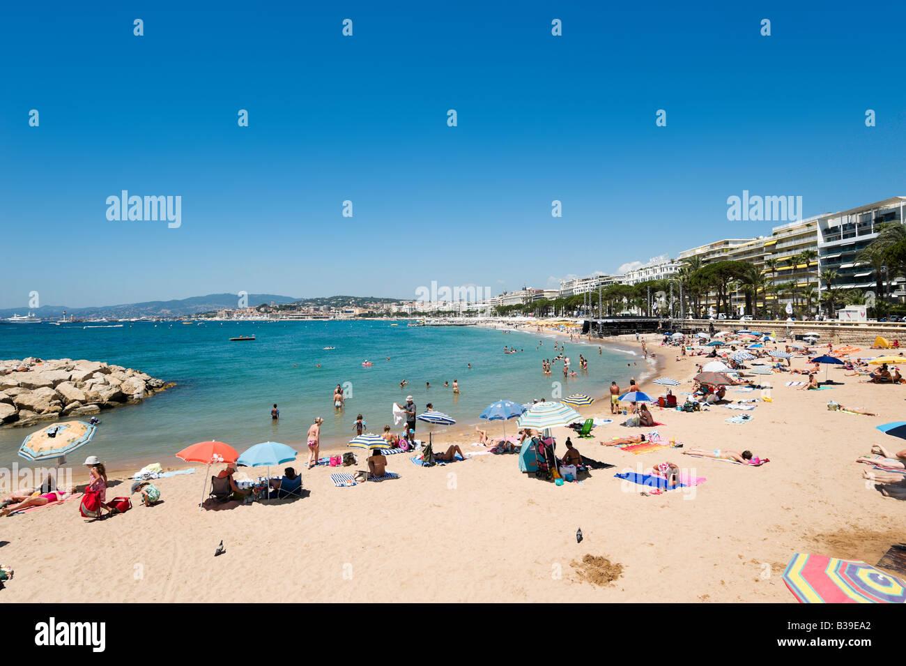 Plage de la Croisette (La Croisette Beach), Cannes, Cote d'Azur, Provence, France - Stock Image