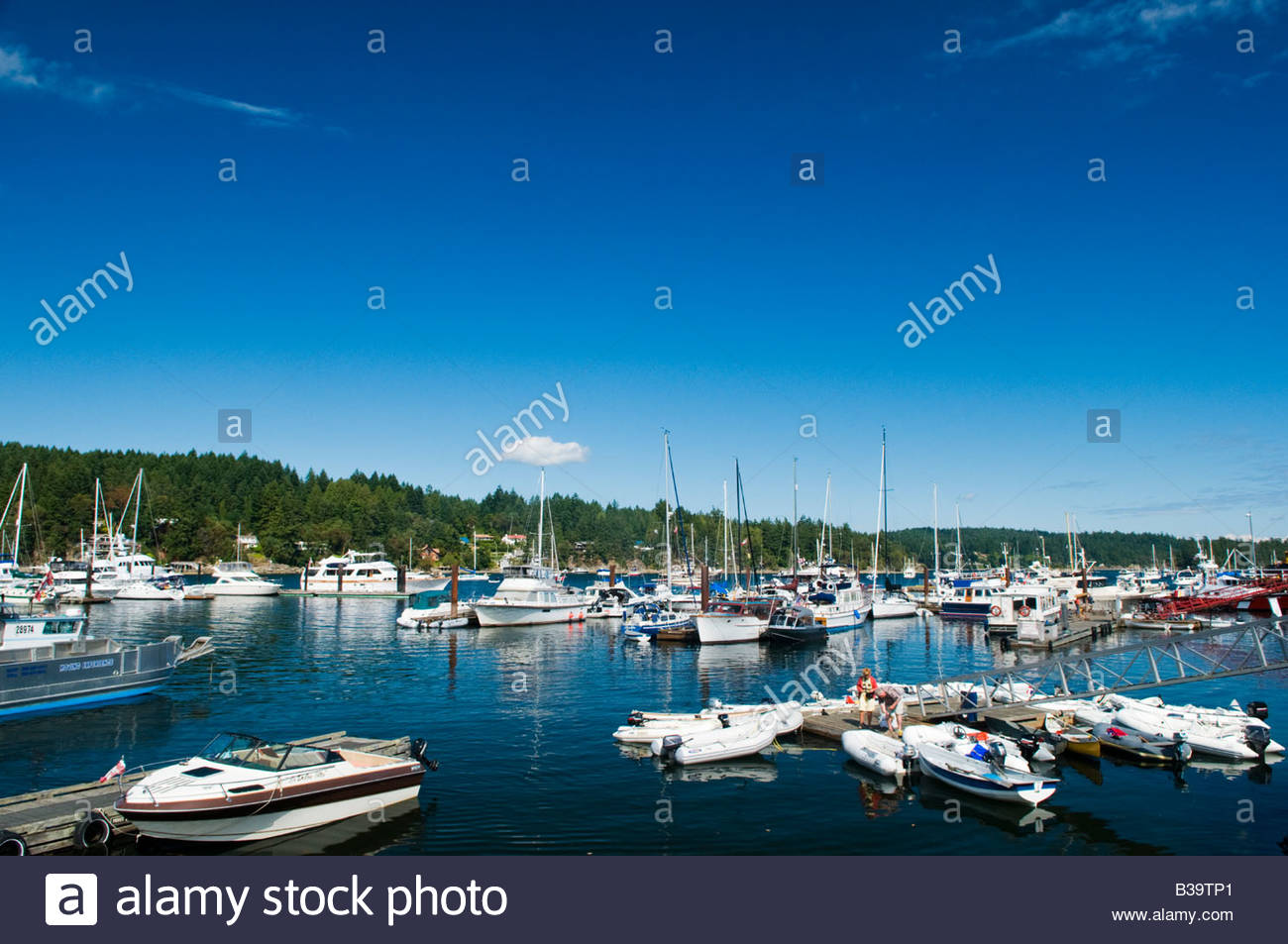'Sailboats in Ganges Harbour on Saltspring Island  British Columbia Canada' - Stock Image
