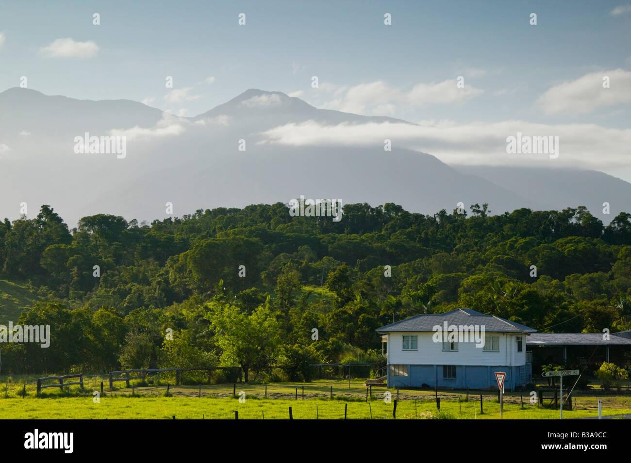 Australia, Queensland, North Coast, Babinda, View of Bartle Frere, Queensland's Highest Mountain (e. 1622 meters) Stock Photo
