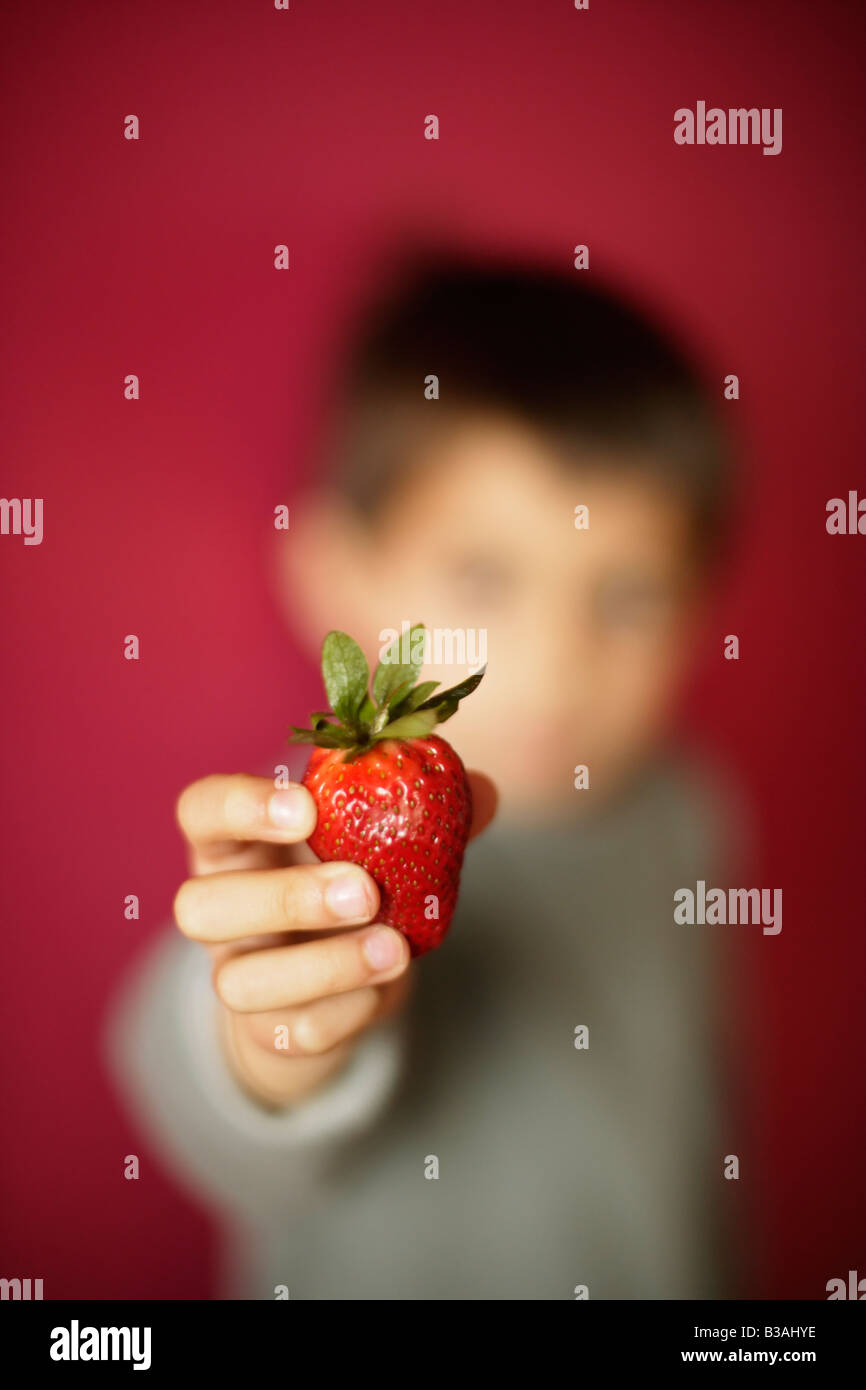 Six year old boy holds strawberry - Stock Image