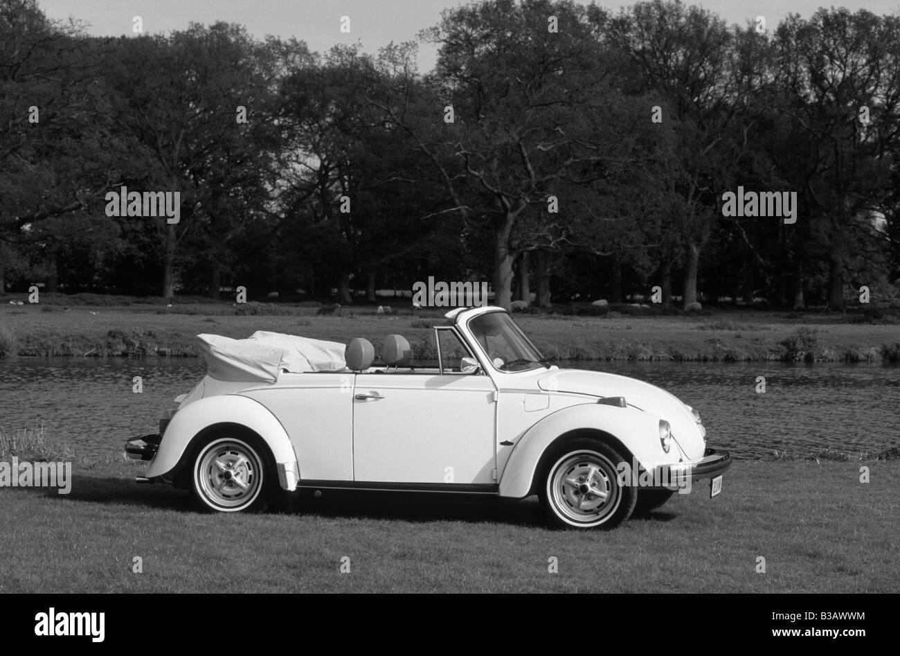 Volkswagen Beetle Cabriolet. Stock Photo