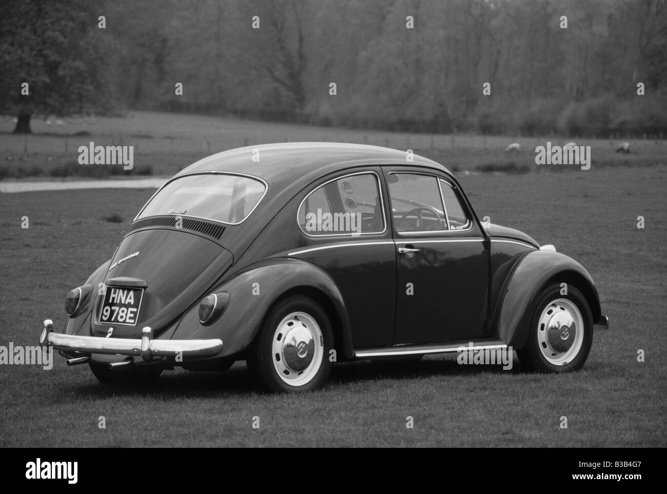 Volkswagen Beetle 1500 of 1967. - Stock Image