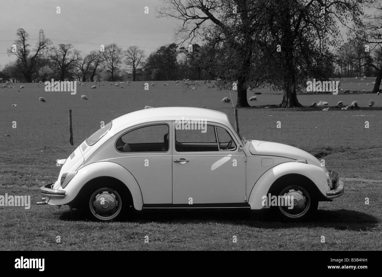 Volkswagen Beetle 1300. - Stock Image