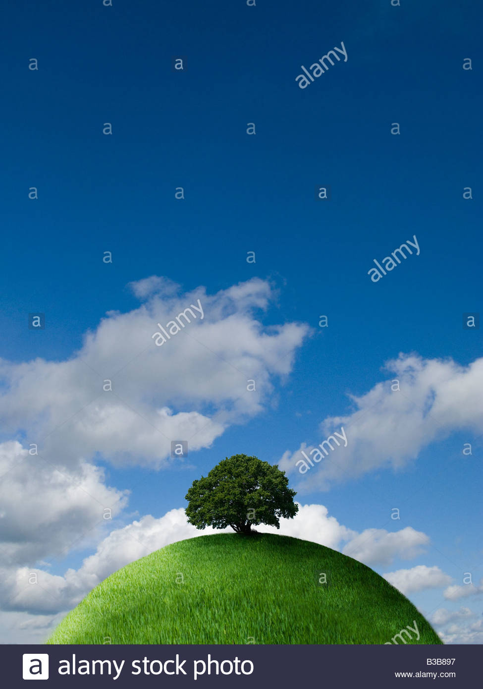 Tree on top of grassy globe - Stock Image