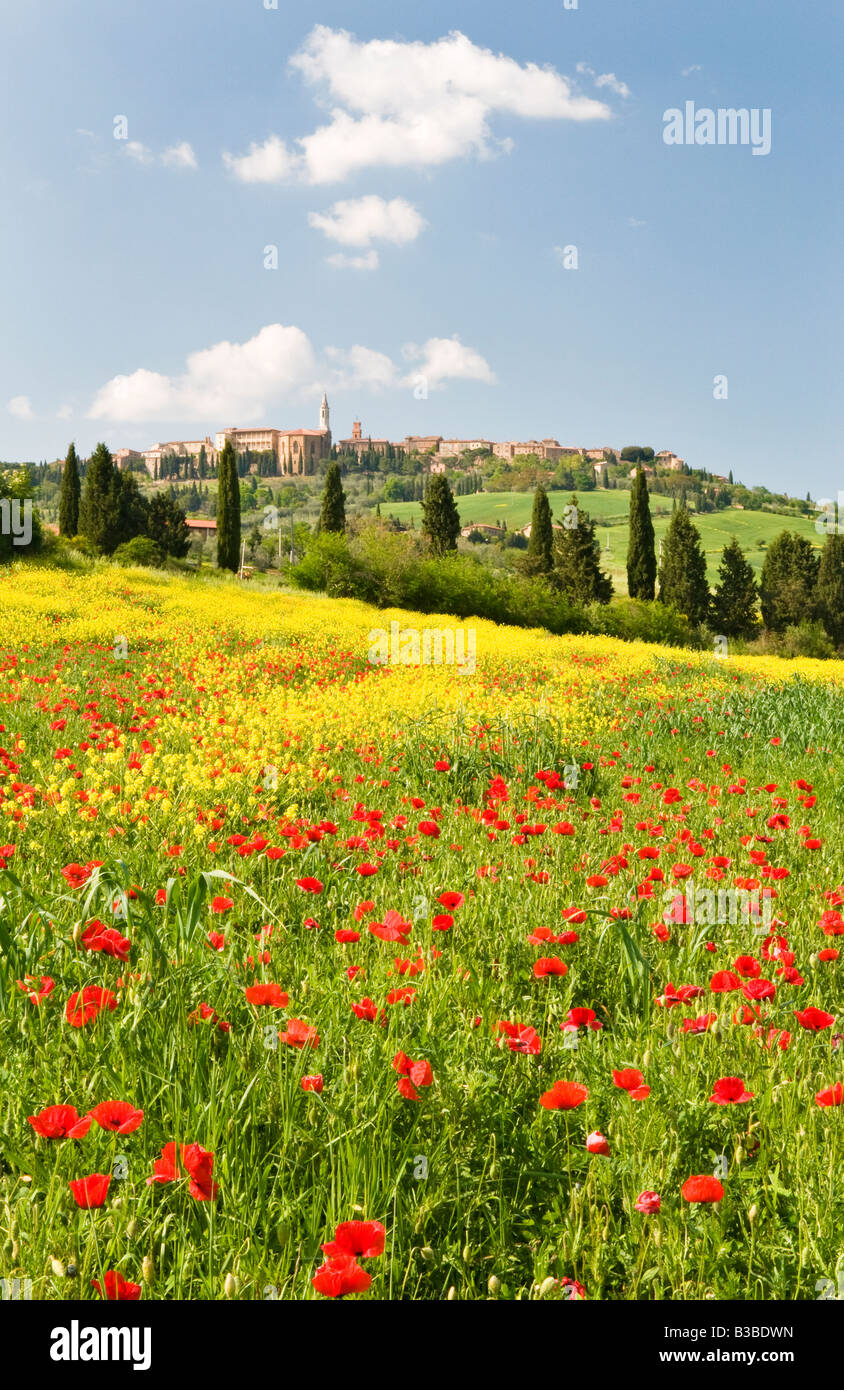 Hill town Pienza and field of poppies, Tuscany, Italy - Stock Image