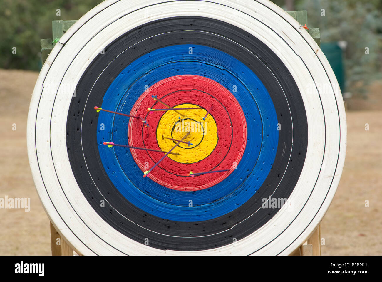 image of an archery target full of arrows - Stock Image