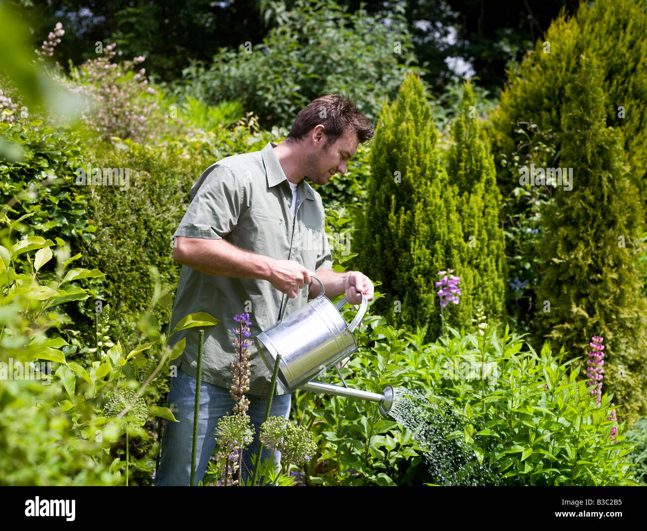 A Man Watering The Plants In A Garden Stock Photo 19319641 Alamy